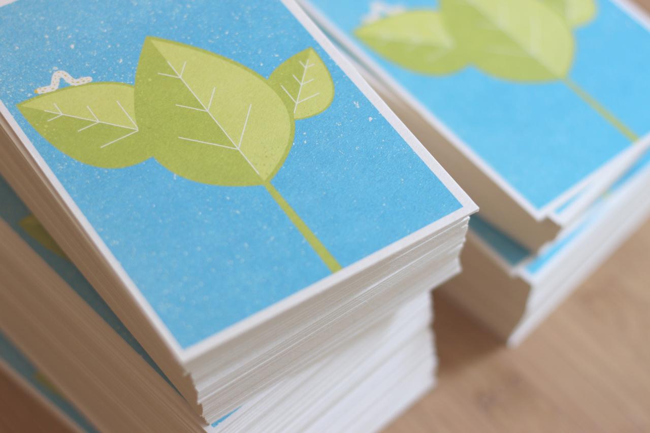 postkarte raupe